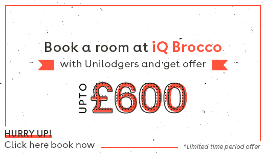 iQ-Brocco-Offer-Image